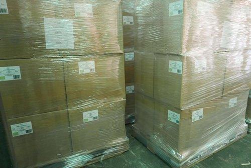 export-ygua-moringa