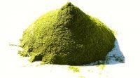 El polvo de hojas de Moringa oleifera tiene actividad hipocolesterolémica, especialmente cuando se incluye regularmente en la alimentación.